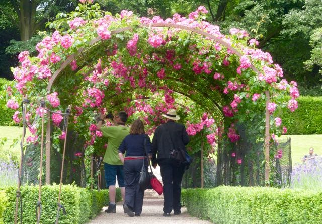 Group walking through the pink rose arch