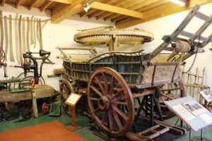 Visit to Tiverton Museum @ Tiverton Museum of Mid-Devon Life