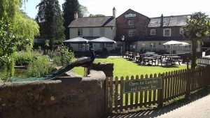 Lunch at Bickleigh Mill @ Bickleigh Mill