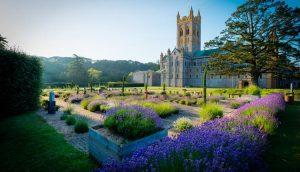 Visit to Buckfast Abbey Gardens @ Buckfast Abbey Gardens