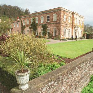 Visit - Killerton House and Park @ Killerton House and Gardens
